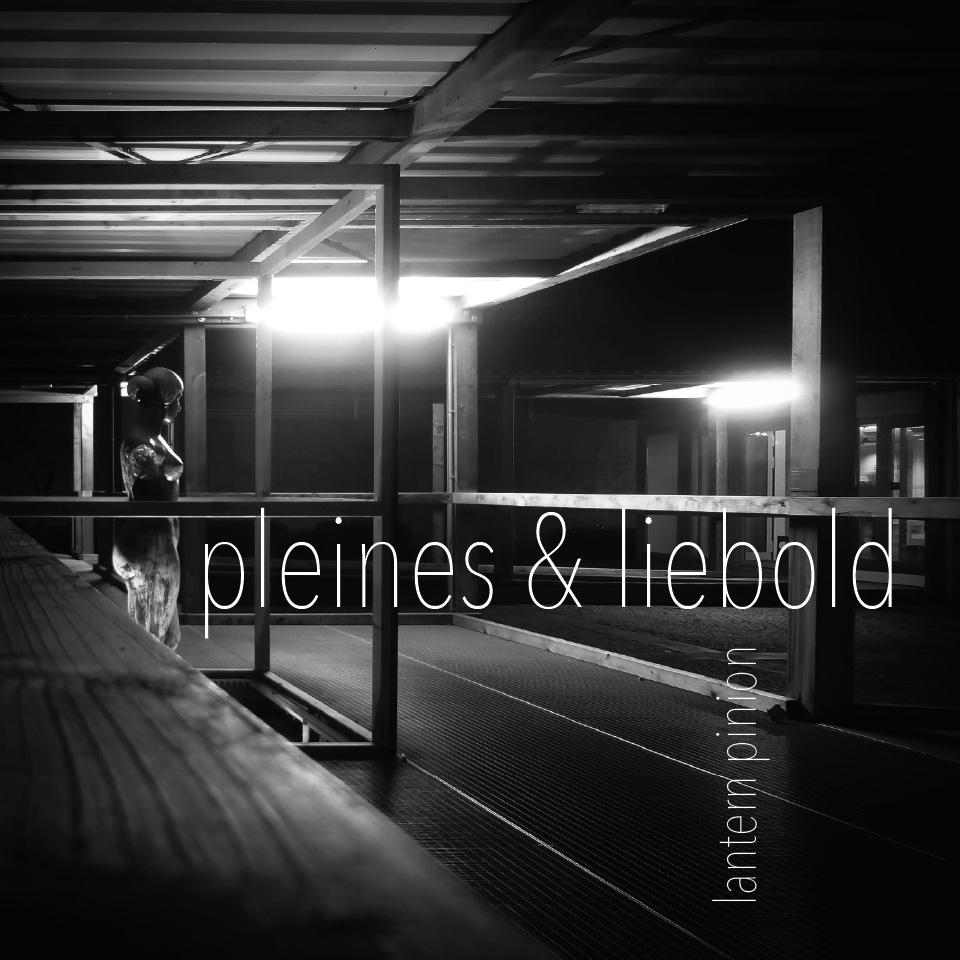pleines & liebold – lantern pinion